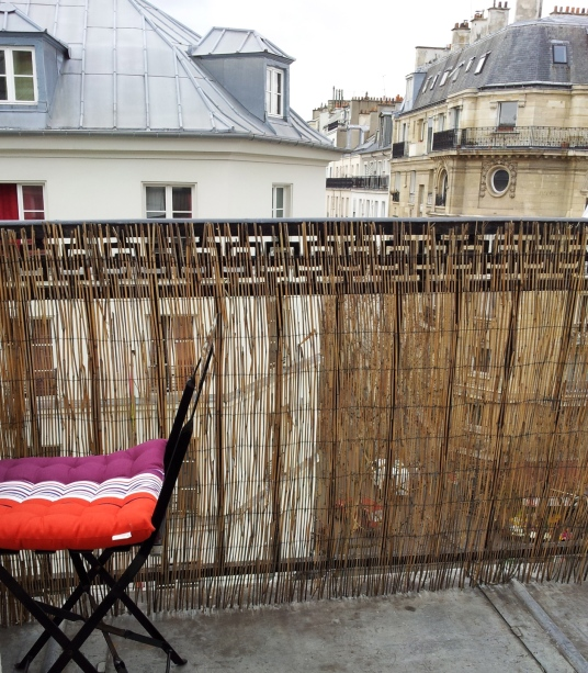 This was the balcony in my temporary Parisian home!