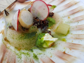 Voted best dish of the festival - ceviche of hand-dived scallops with black quinoa, creme fraiche, radishes, fennel & dill